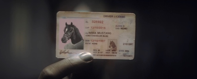 Zebra's Fake ID