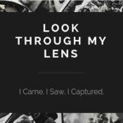 Look Through My Lens