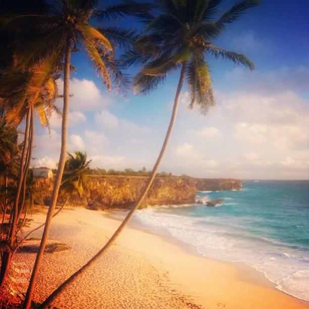 beach tunes