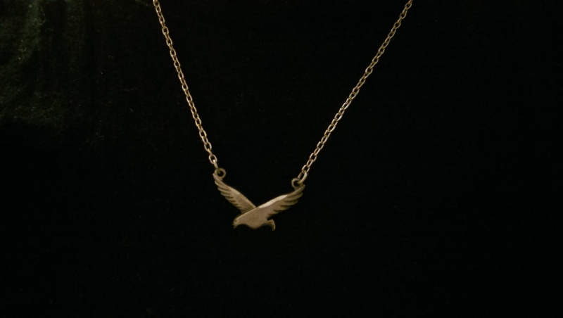 yerdle bird necklace