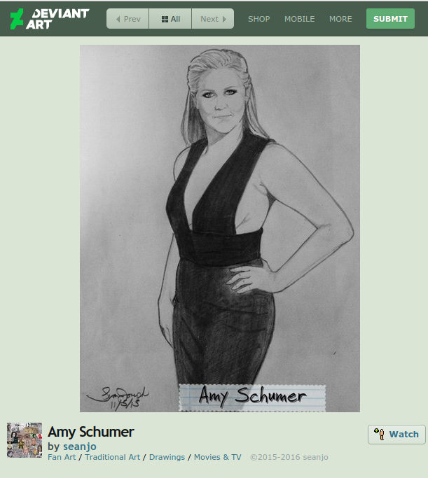 amy schumer fan art